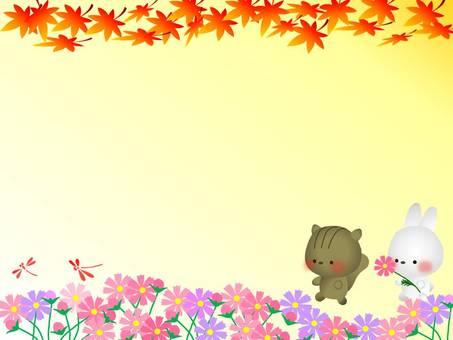 Autumn 桜 畑