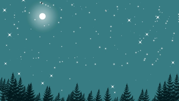 Full moon night lighting the forest