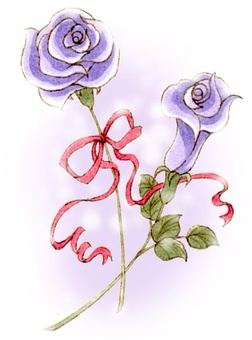 Rose purple 1