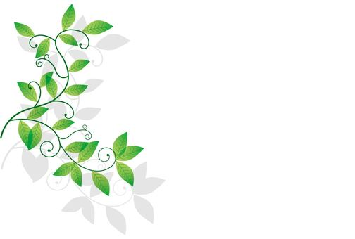 Leaf / type f / uta