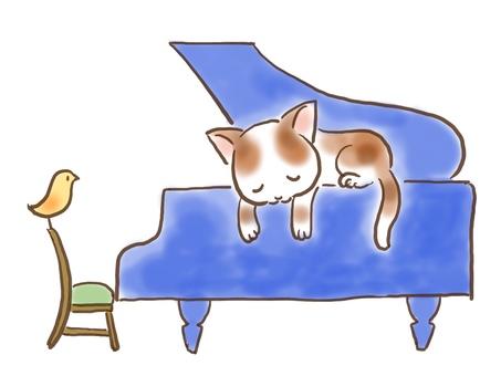 Gutara Cat 2