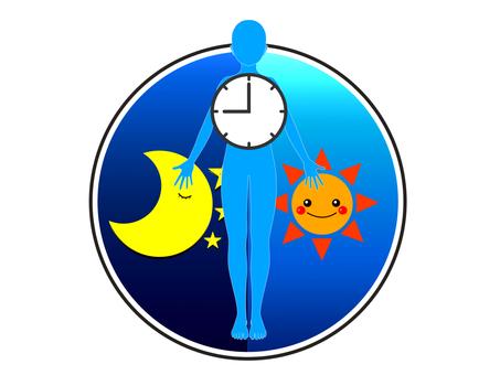 Biological clock 2