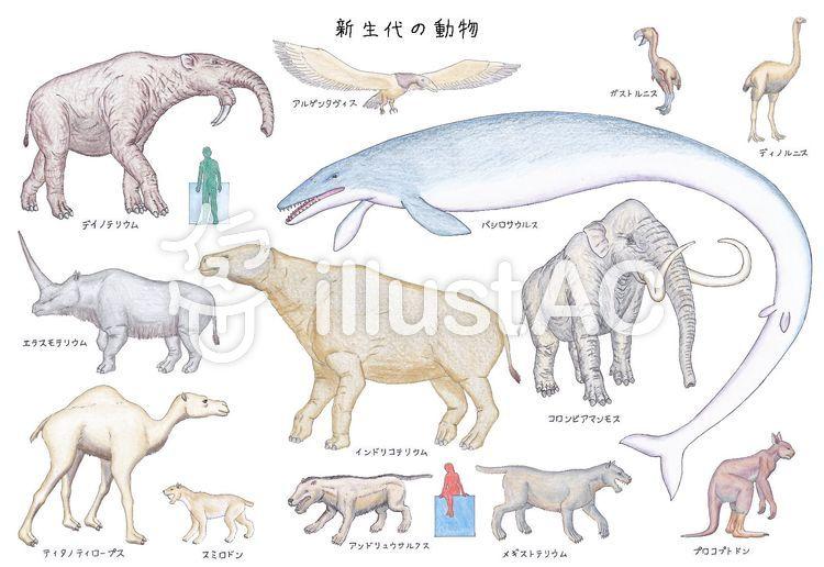 新生代の動物・哺乳類と鳥類イラスト - No: 1315241/無料イラストなら ...