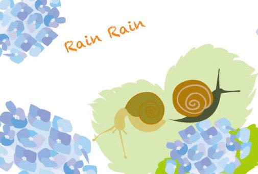 Raina with rainy season with hydrangea and snail