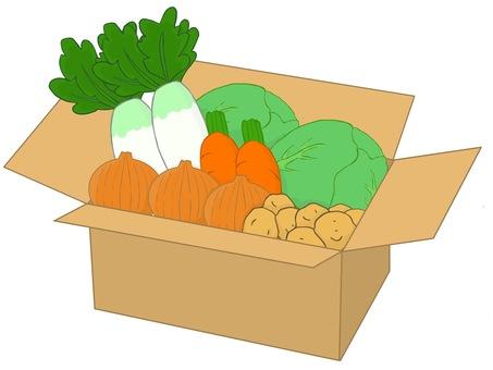 Assorted set of vegetables
