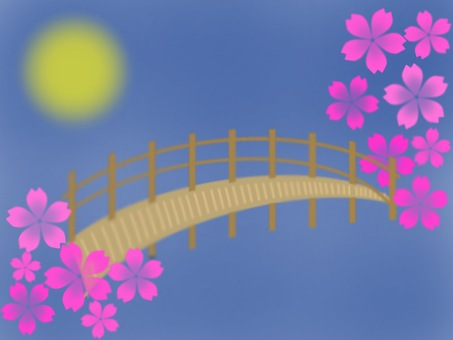 Cherry blossoms and bridges at night