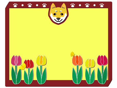 Tulip and Shiba Inu (cs 2 ↓)