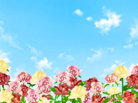 사랑의 꽃