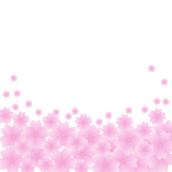 Sakura (Sakura background)