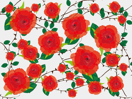 Packaging paper design (roses)