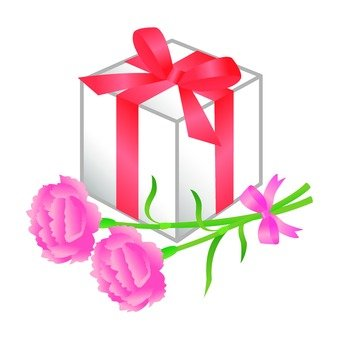 Carnations and gifts
