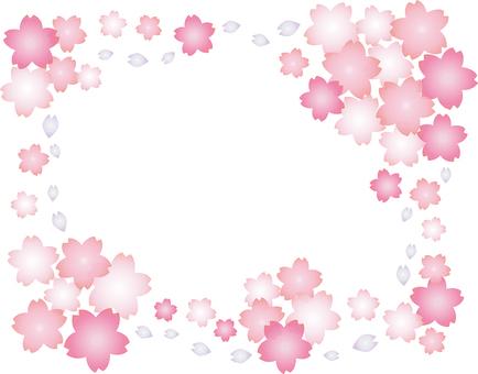 Taniec 桜