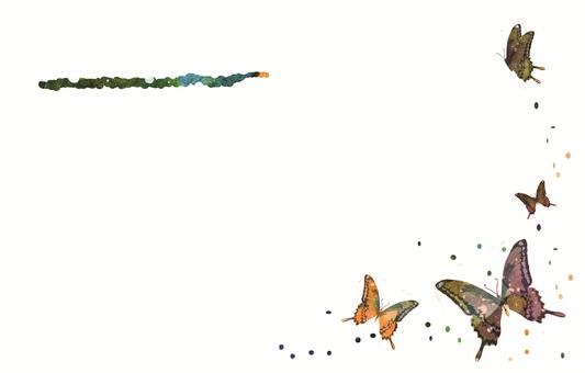 메시지 카드 (나비)