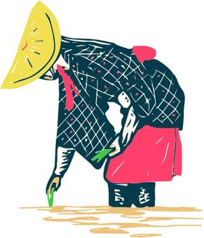 Kimono women climbing in rice