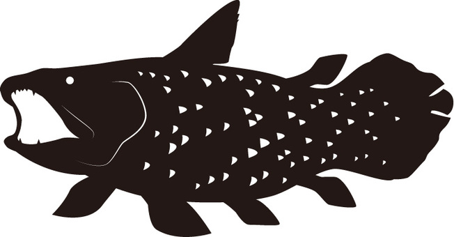 Coelacanth Silhouette