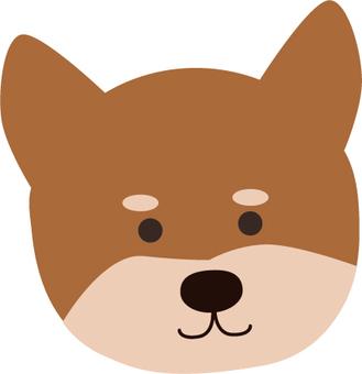 Shiba Inu face frontal brown