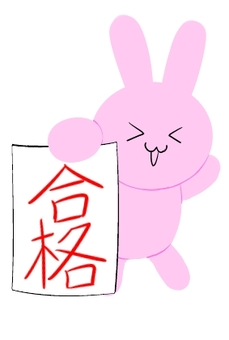 Passed Usagi