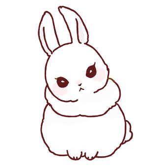 Rabbit (neck scoop)