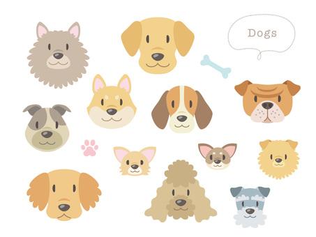 Dog's face _ Dog breeds various _ 01