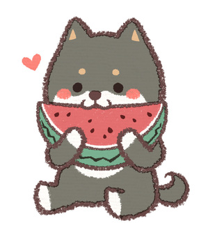 Watermelon ebony dog