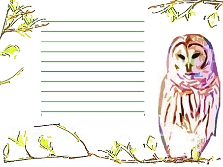 Owl message card