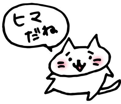 Castor cat