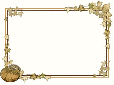 框架南瓜①棕褐色