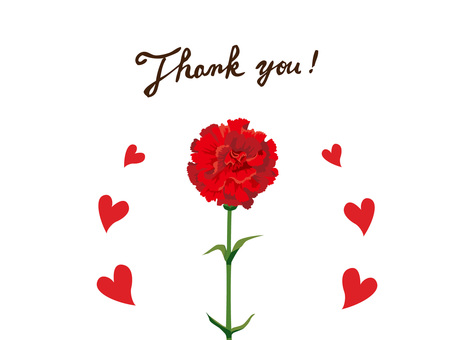 Mother's Day Carnation's Thank You Card 1