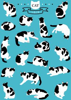 고양이 (리얼 흑백) 18 포즈