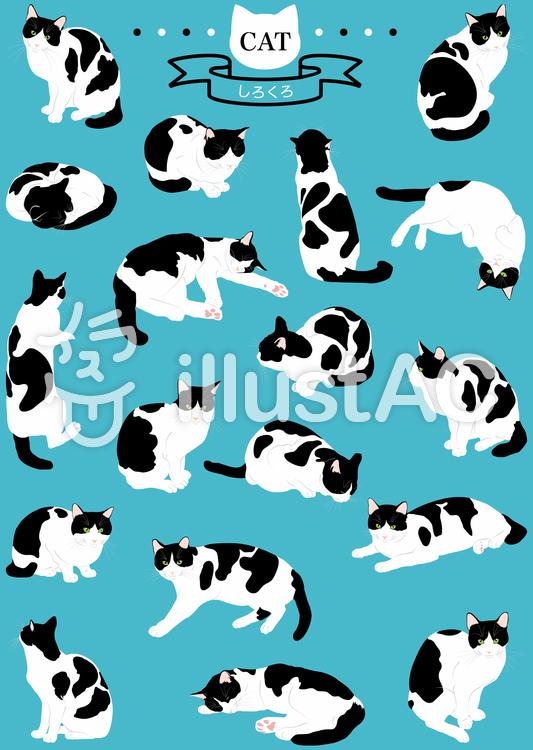 猫(リアル・しろくろ)18ポーズのイラスト