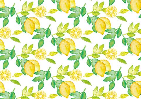 """""""수채화 바람""""레몬 패턴"""
