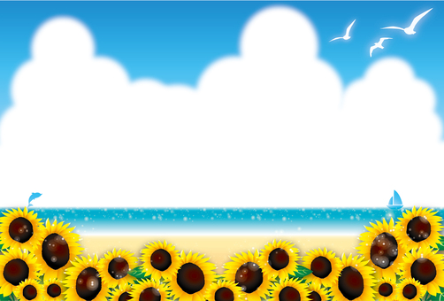 Seaside sunflower field