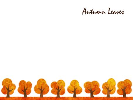 Autumn leaves row of trees avenue of trees autumn orange yellow