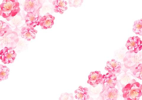 복숭아 꽃