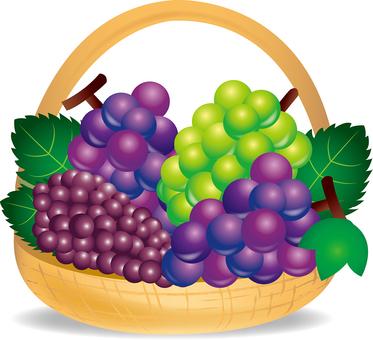 A grape basket