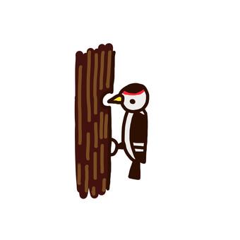 Illustration of woodpecker