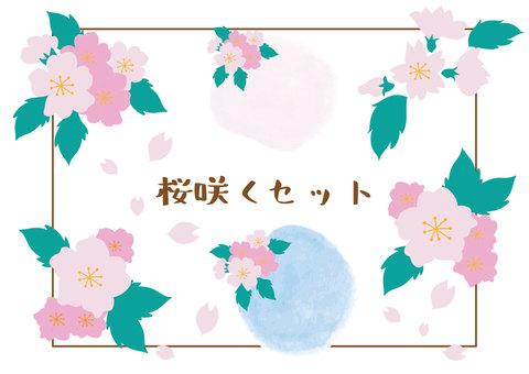 Sakura blooming set