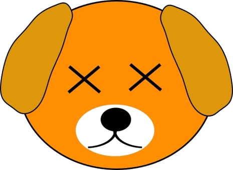 Cross eyes series 15, cross eyes dog