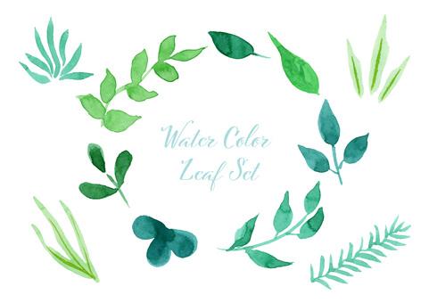 Watercolor illustration 01 leaf set