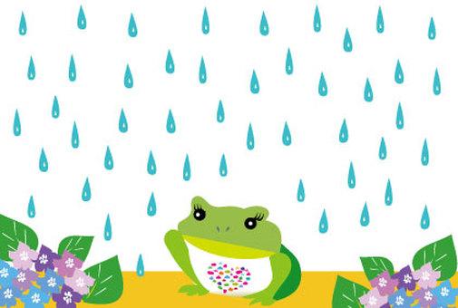 June cut of hydrangeas and rain frogs