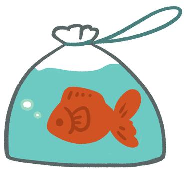 Takeaway Goldfish