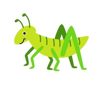 Yellow green grasshopper