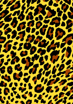Background _ leopard handle _ yellow