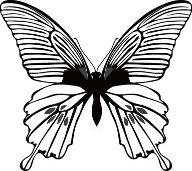 Butterfly (monochrome)