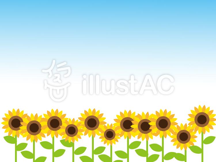 夏のひまわりのイラスト