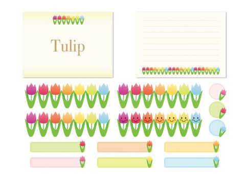 Tulip material