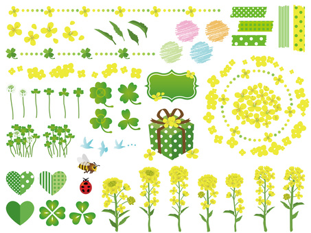 Spring rape flower and clover material collection