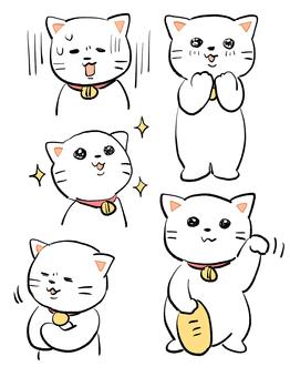 고양이 양