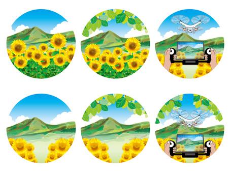 向日葵摘要(5)中型田野和山脈等