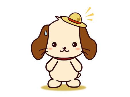 Wanko (Hat)